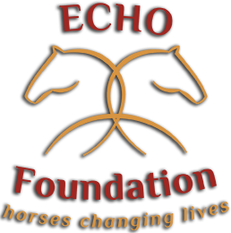 ECHO Logo Shadow